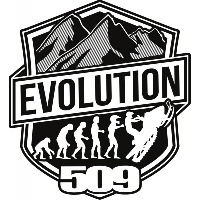 "Комплект наклеек Evolution – 4"" (10 шт)"